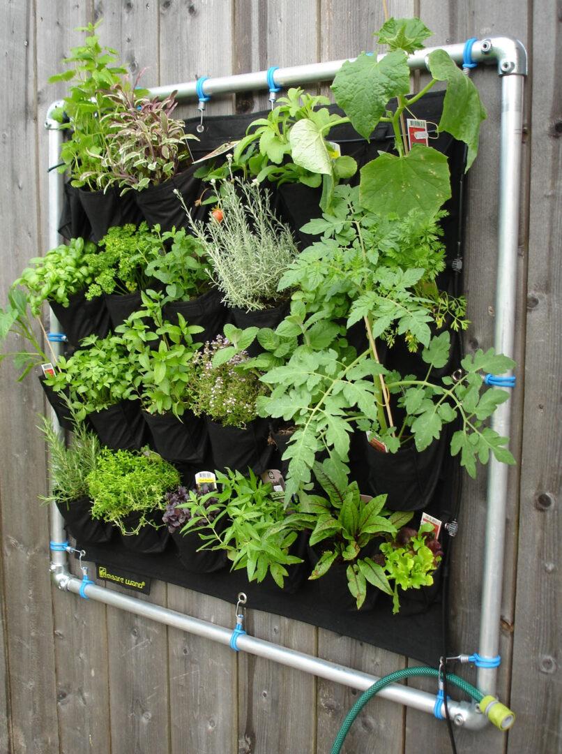 Un jardín vertical en casa